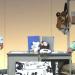 【動画】サンドウィッチマンの『パンダ』のコントがクソほどおもしろい!!